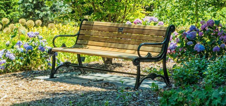 L'interprétation des rêves en Islam sur le banc
